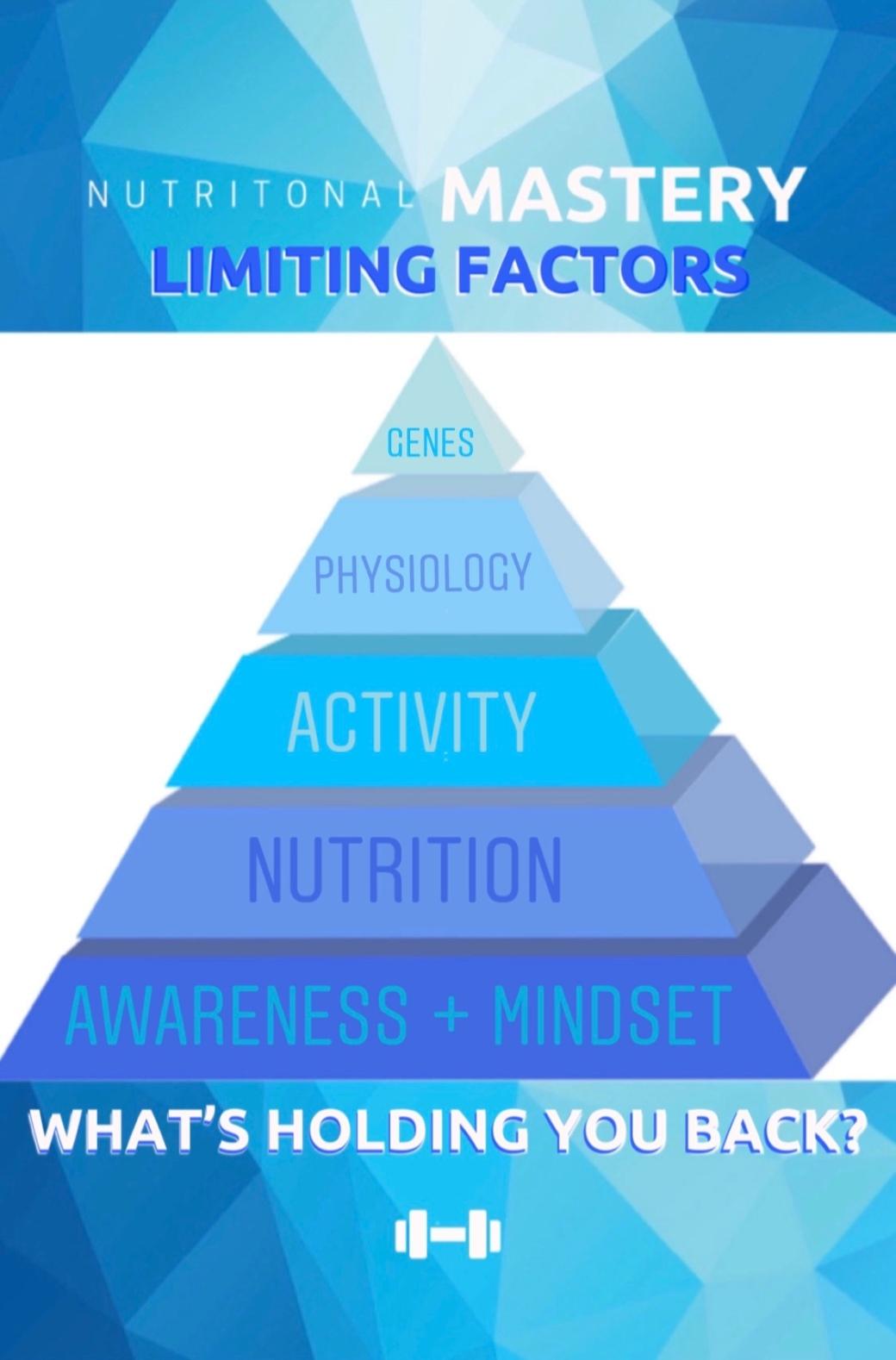 Limiting Factors Full Cover